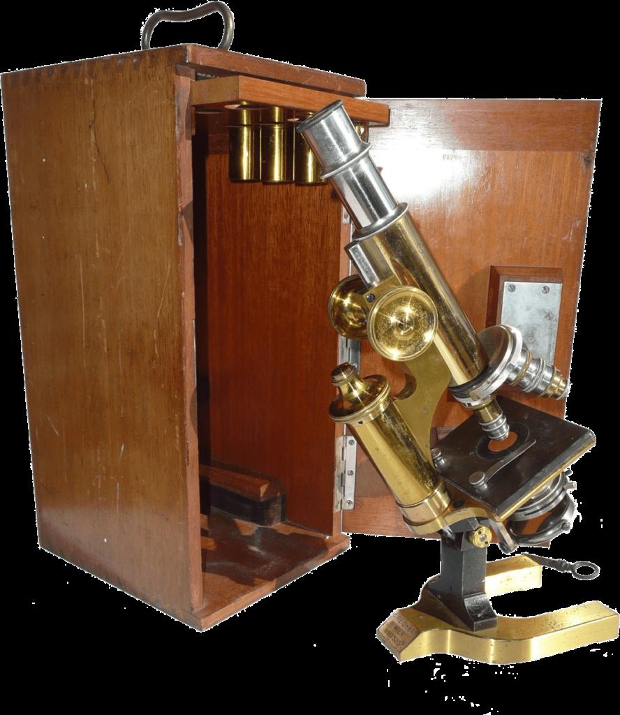 Carl Reichert compound microscoop
